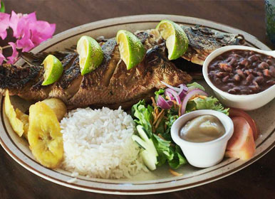 Puerto JImenez Restaurant